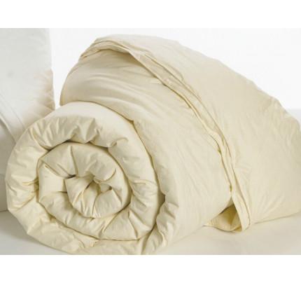 Πάπλωμα (Σετ 1+1) Υπέρδιπλο 220x240 Aloe vera Palamaiki White Comfort Ivory
