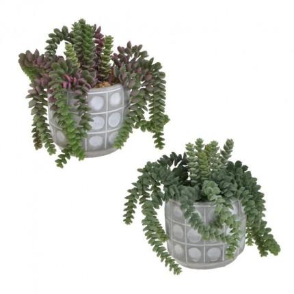 Φυτό Σε Γλάστρα Inart 3-85-475-0241