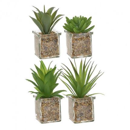 Φυτό Σε Γλάστρα 4 Σχέδια