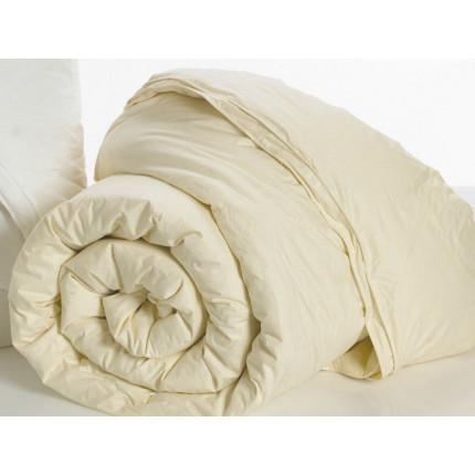 Πάπλωμα Μονό (Σετ 1+1) 160x240 Aloe vera Palamaiki White Comfort Ivory